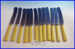 12 Swedish Vintage Old Jernbolaget Eskilstuna Rostfri Cutlery Knives (#2753)
