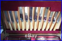 Vintage Canteen of Cutlery 62 pcs Old English fake bone and silver plate Sanders